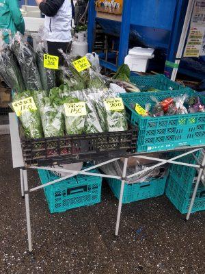 船橋漁港の朝市では野菜を販売。いろんな珍しい野菜が