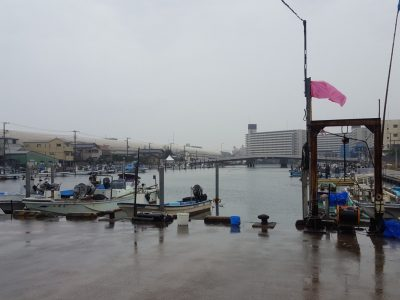 船橋漁港の朝市会場から海を望む